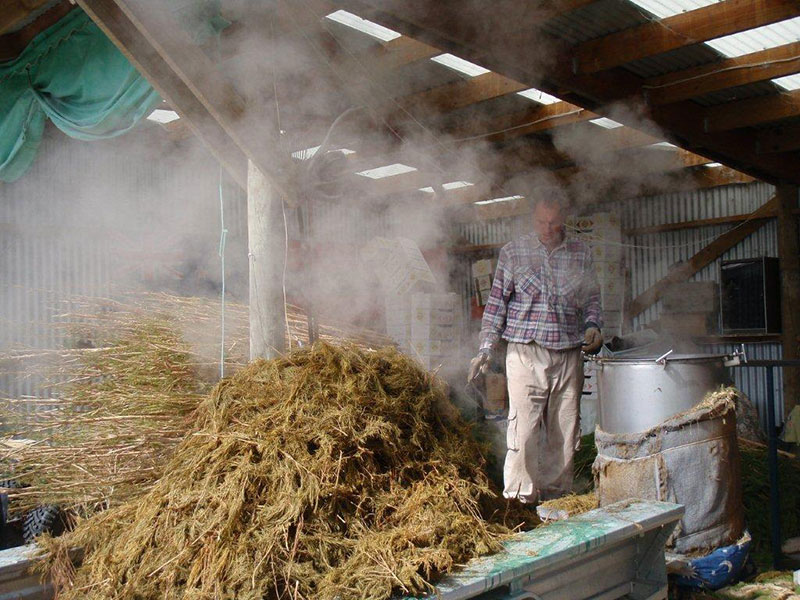 Hamish Macbeth Distilling Tea Tree