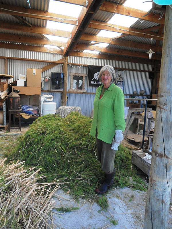 Margaret Processing Tea Tree